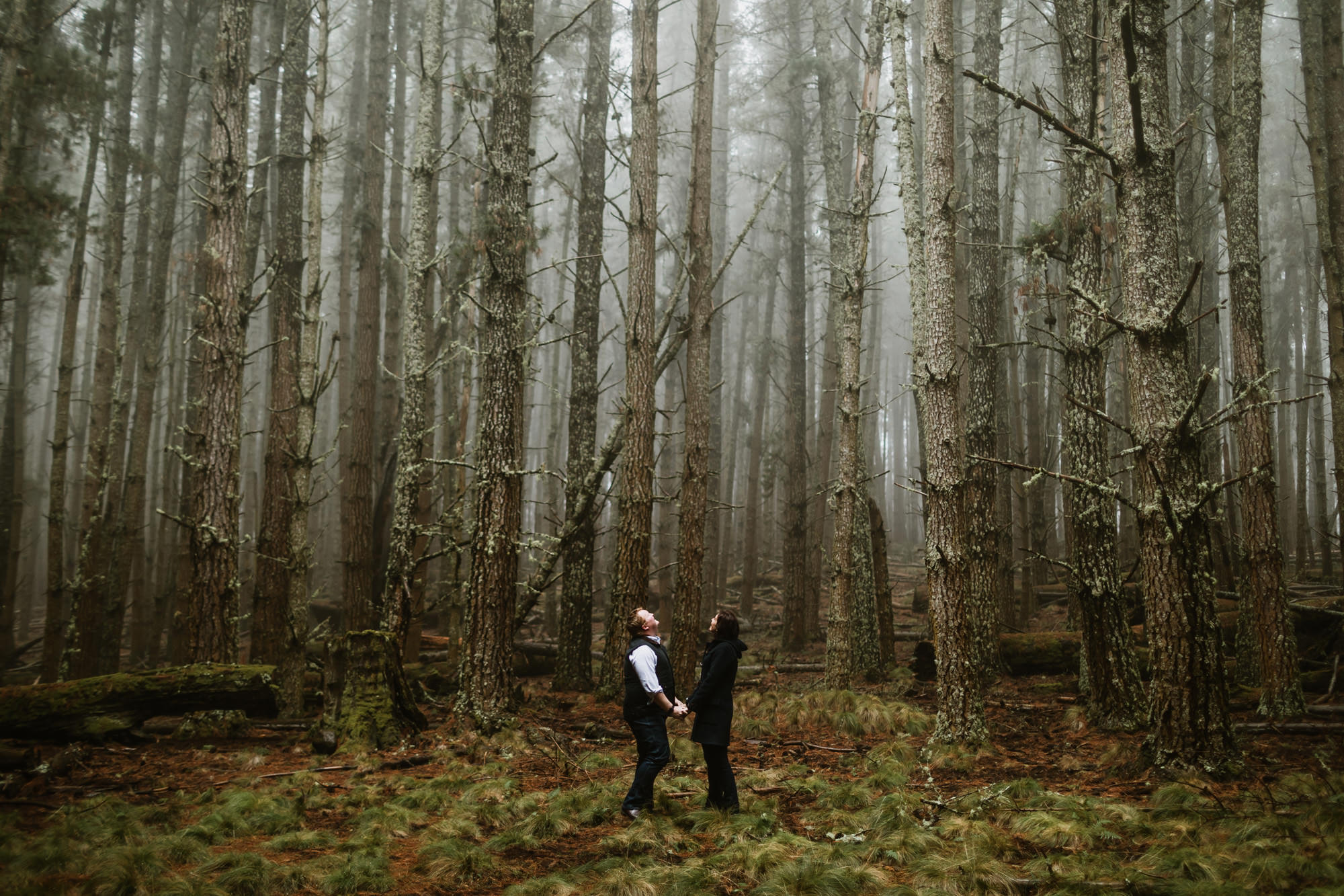 Barrington Tops Engagement Photography